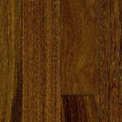 1/2&#034; x 3-1/4&#034; Select Brazilian Chestnut Engineered